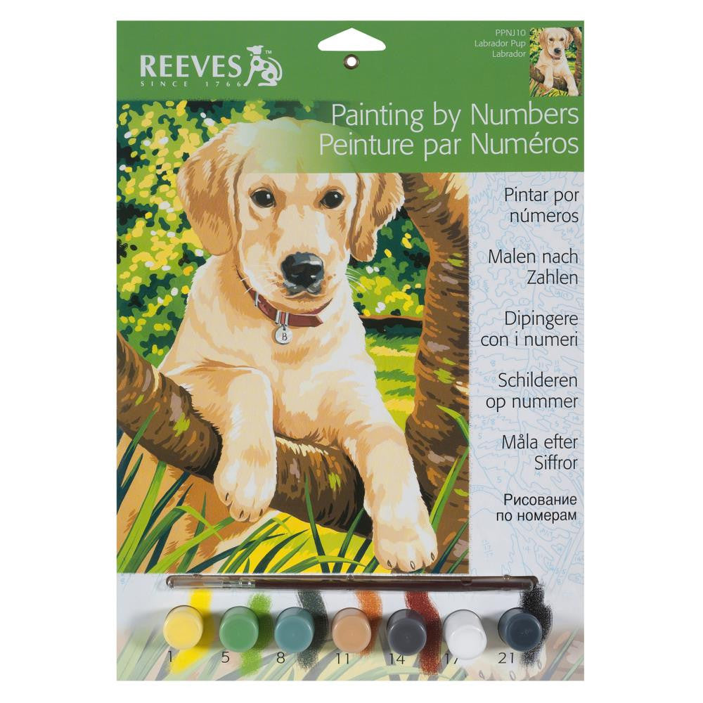 reeves paint by number instructions