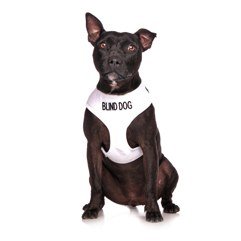 dog harness fitting instructions
