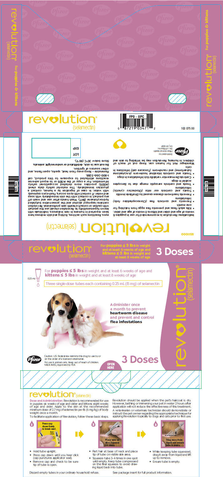 revolution for dogs instructions