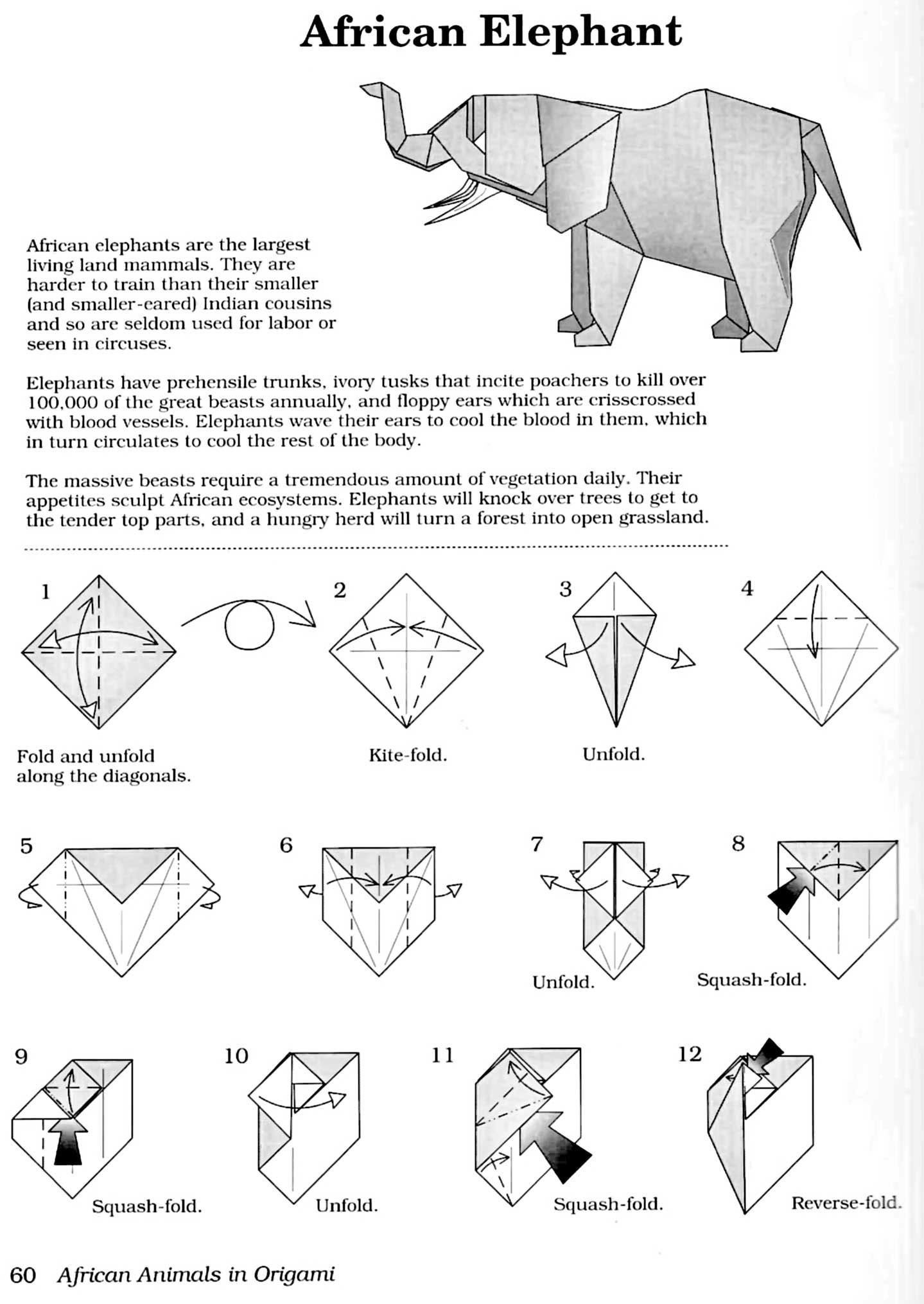 origami angel instructions pdf