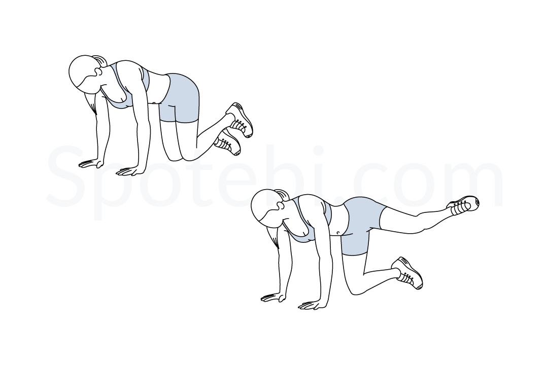 exercise diagrams and instructions